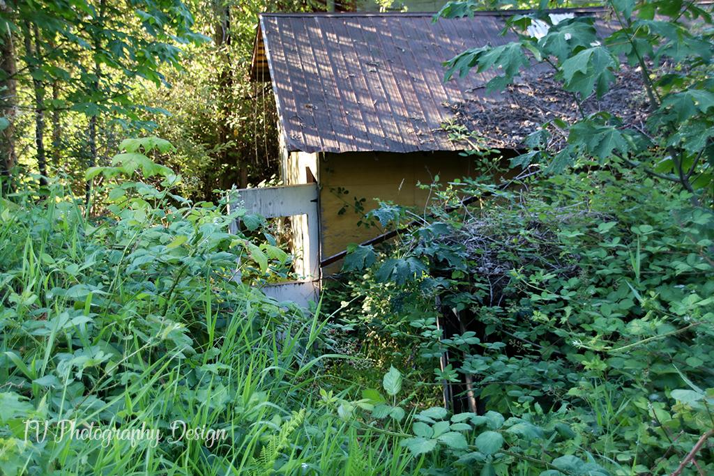 Abandoned Shed – Rosedale
